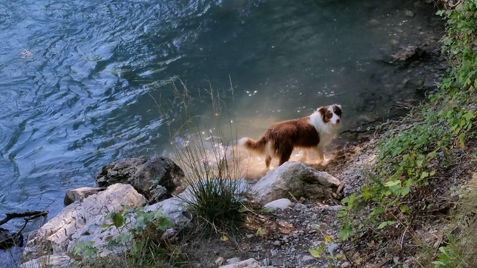 gorges-du-verdon-camping-12