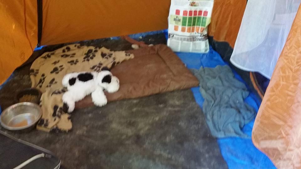 gorges-du-verdon-camping-4